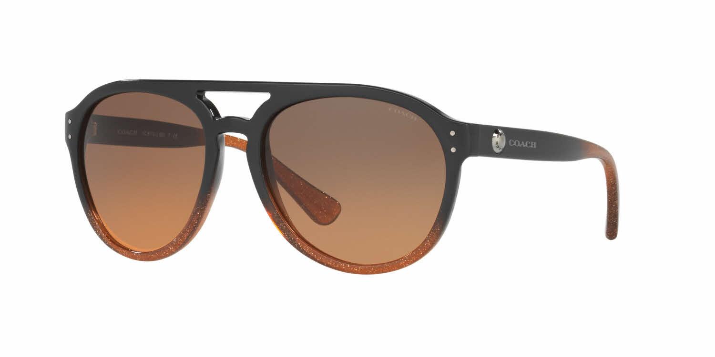 Coach HC8170 Sunglasses