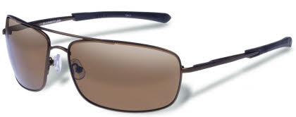 Gargoyles Sunglasses Barricade