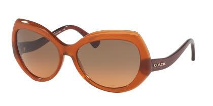 Coach HC8177 Sunglasses