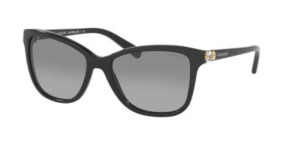 Coach HC8187B Sunglasses